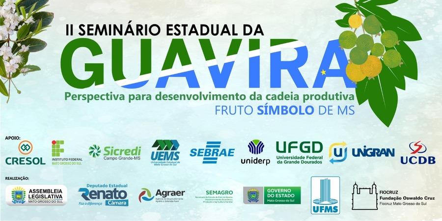 Center seminario guavira1