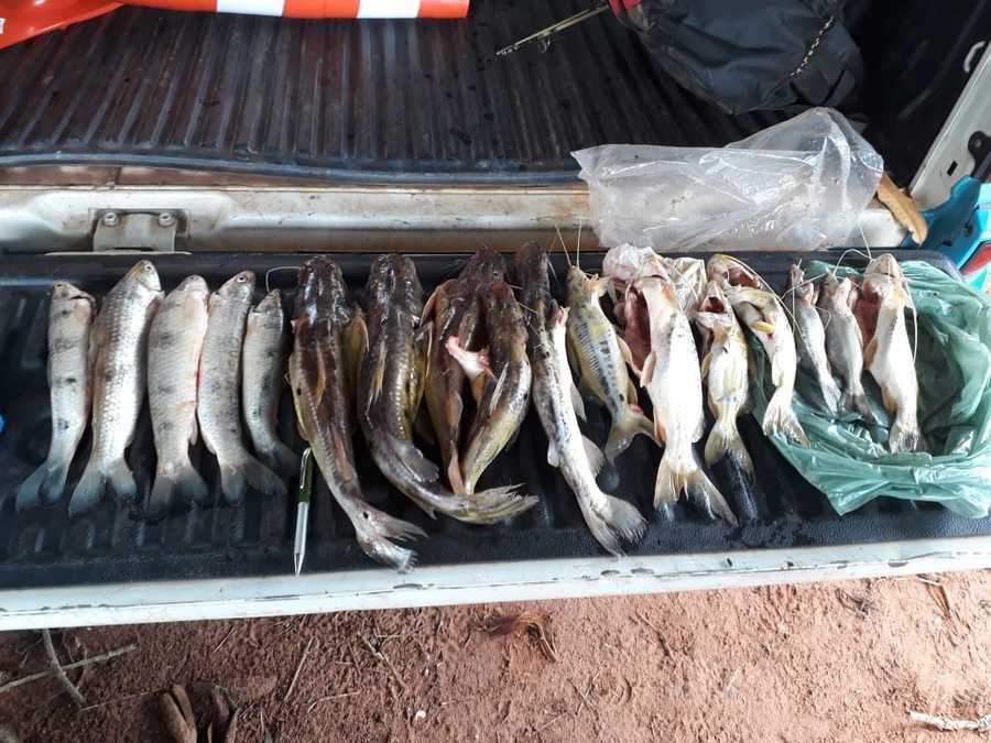 Center pescado cg 16 de janeiro de 2019