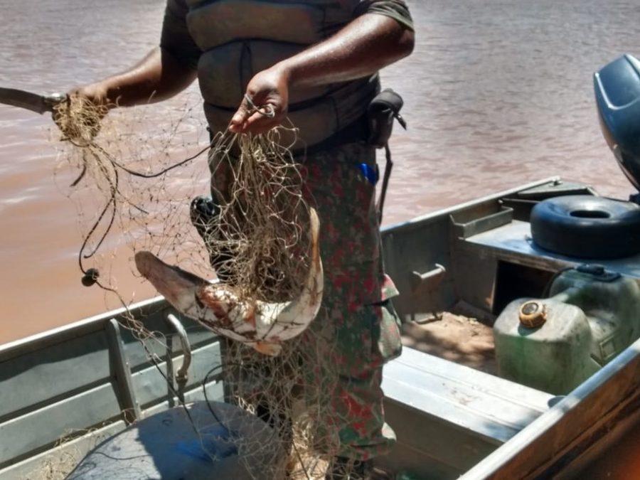 Center pescado preso rede coxim 2 de mar o de 2020 1024x768