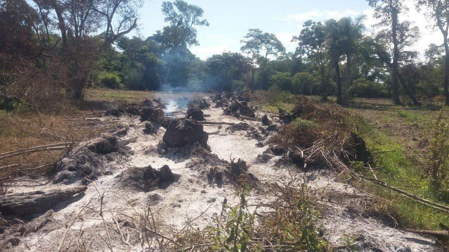 Center queima de maderia em leiras 5 de mar o de 2020 1536x864
