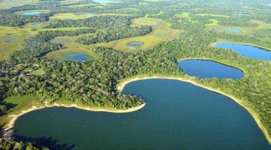 Center pantanal ms