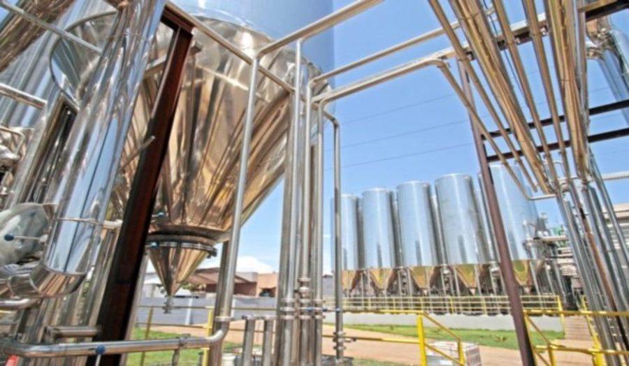 Center economia industria cervejaria bamboa foto saul schramm 768x425 730x425
