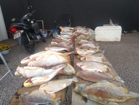 Left or right pesca bataguassu hot point 5 de set de 2021 2 1536x1153