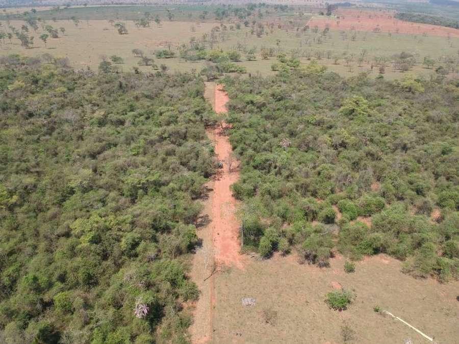 Center imagem drone desmatamento bataypor 17 de setembro de 2019